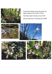 thumbnail of signs of spring
